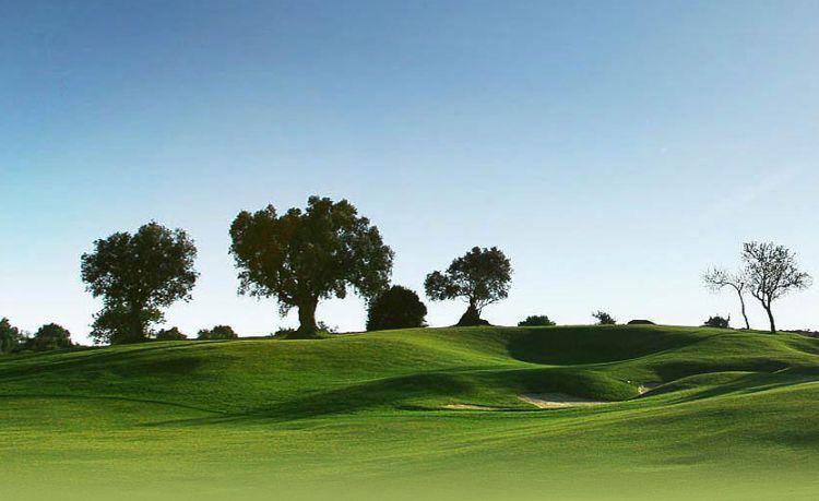 Alto Golf Pestana