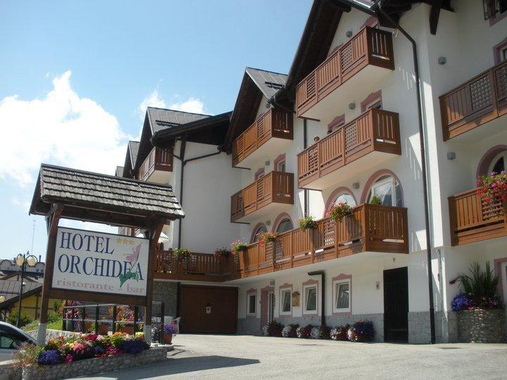 Hotel-Orchidea.jpg