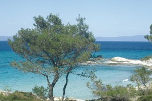 Plaja MEGA DRAFOS