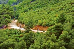 Pont 7 - Drumeţii pe potecile Skiathosului