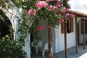 Vila Dionissos
